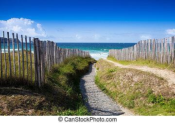 beach access at wild beach