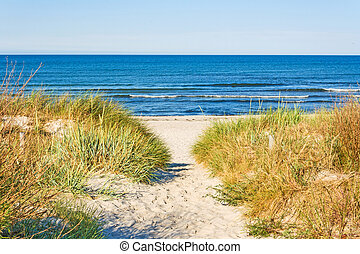 Beach access - beach access, pathway to the baltic sea with...