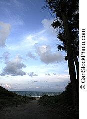 Beach Access - Beach access trail at Edisto Island Beach,...
