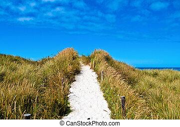 Beach access - White sand on a beach access in the dunes