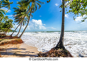 beach after storm in Thailand