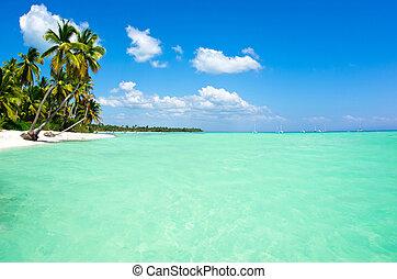 sea - beach and beautiful tropical sea