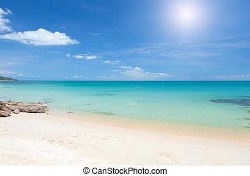 beach and clear tropical sea