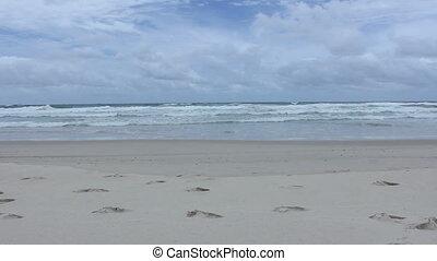 Beach and Ocean.