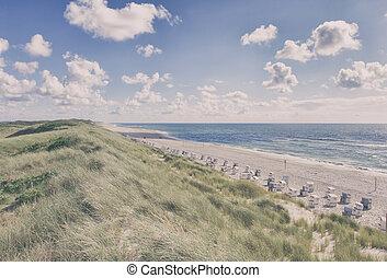 Beach and Sand Dune. Beach covered with Marram Grass, Germany, Sylt, List.