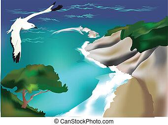 Beach and seagull