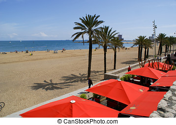 Beach and sun shades in Barcelona - Sand, sea, sun, palm...