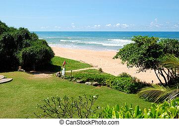 Beach and turquoise water of Indian Ocean, Bentota, Sri...