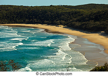 Beach at Alexandria Bay, Noosa Heads, Queensland, Australia