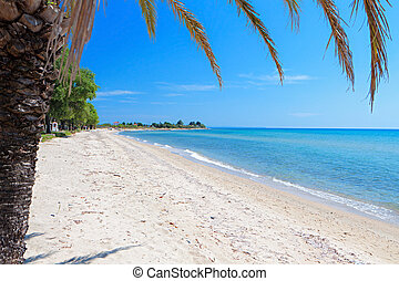 Beach at Chalkidiki in Greece - Scenic beach at Chalkidiki...