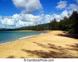 Beach at Hanalei Bay. Kauai, Hawaii