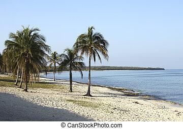 Beach at Maria la Gorda