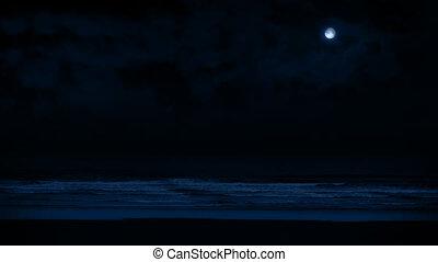 Beach At Night In Moonlight