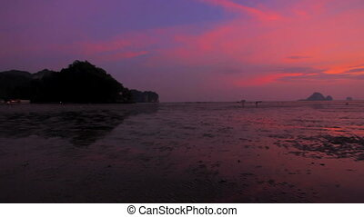 Beach at sunset after low tide