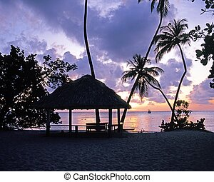 Palm Trees and Boat in the bay silhouetted against the sunset, Pigeon Point, Tobago, Trinidad & Tobago, Caribbean, West Indies