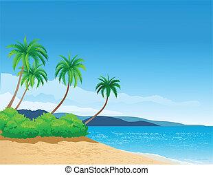 beach background - vector illustration of tropical beach...