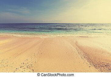 Beach - Beautiful ocean beach, instagram filter