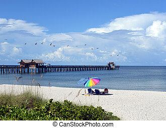 Beach bird watching - This is a photo of beach goers...