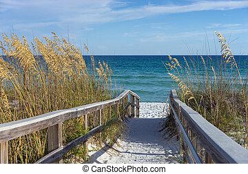 Beach Boardwalk with Dunes and Sea Oats - Sandy boardwalk...