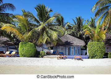 Beach bungalows, Maldives - Beach bungalows with deck chairs...