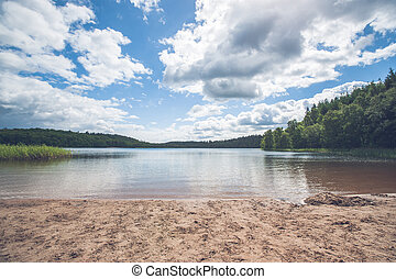 Beach by a beautiful forest lake