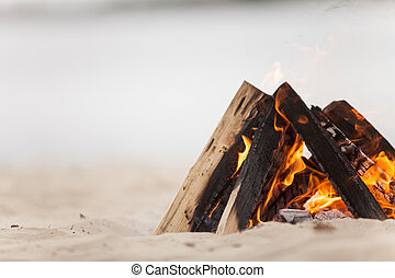 Beach campfire on lake with sand shore. burning wood on ...