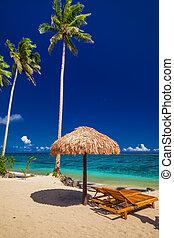 Beach chairs under umbrella with palm trees, Samoa Islands
