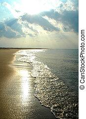 beach coastline, direct sunlight, cloudy sky, birds