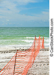 Beach Erosion Protection