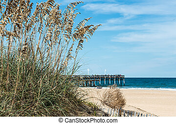 Beach Grass and Dunes with Pier