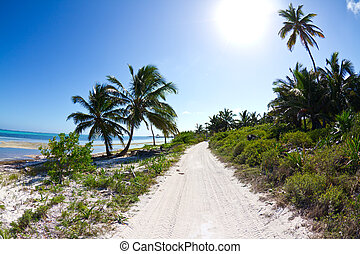 Beach highway on a small tropical island in Belize.