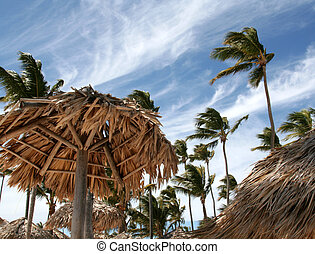 Beach huts and palm trees on the beach at Punta Cana, Dominican Republic.
