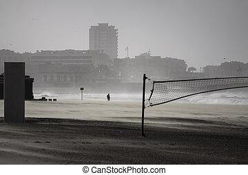 Beach in a stormy winter day