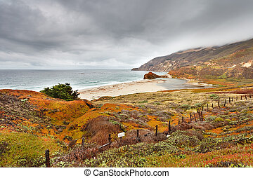 Beach in Big Sur, California, US