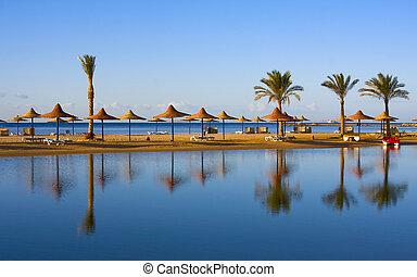 Beach in Egypt - Straw umbrella on the beach of Egypt