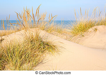 Beach in New Buffalo, Michigan - a close up of a sand dune ...
