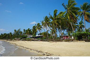 Beach in Nosy Be.