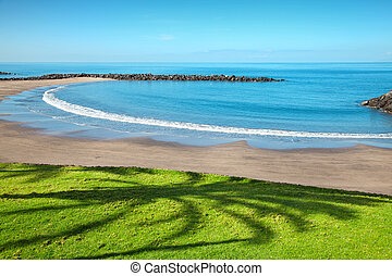 Beach in Playa de las Americas, Tenerife