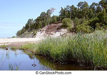Beach in Saulkrasti, Latvia