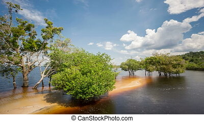 Beach in the middle of Rio Negro, Brazil Time Lapse