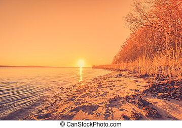 Beach in the sunrise