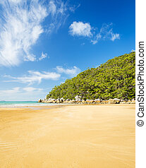 Beach In Wilsons Promontory - Beach at Sealers Cove in...