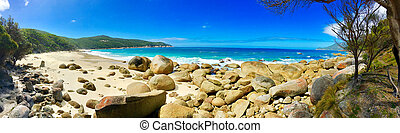Beach In Wilsons Promontory National Park - Panoramic view...