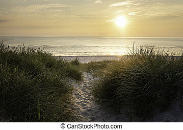 Beach landscape at sunset on Sylt island - Beach sunset on ...