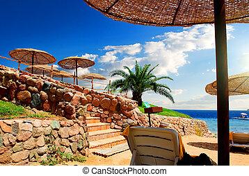 Beach near Red Sea