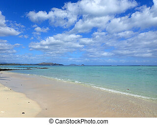 Beach next to Pahonu Pond (Ancient Hawaiian Fishpond) with Shall