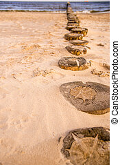 beach of Baltic Sea, Poland with groins