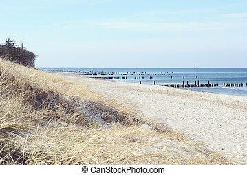 Beach of Darss peninsula (Mecklenburg-Vorpommern) - Beach ...