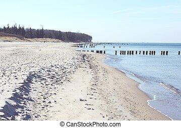Beach of Darss peninsula (Mecklenburg-Vorpommern) - Beach...