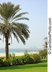Beach of luxury hotel with a view on Palm Jumeirah man-made island,, Dubai, United Arab Emirates
